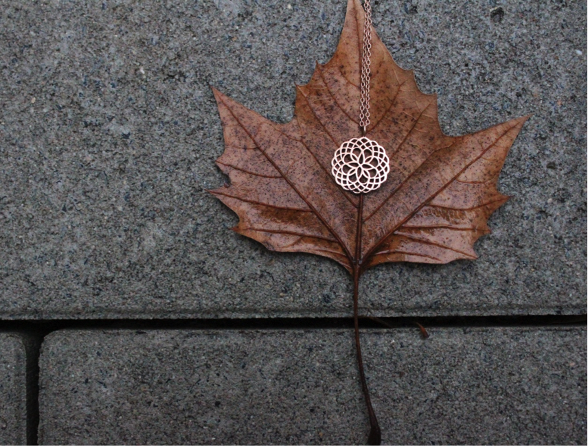 Bronze Necklace on a brown leaf